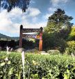 Houby Bečovské botanické zahrady