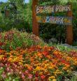 Dendrologická prohlídka botanické zahrady