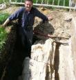 Paleogenní dřeva Doupovských hor
